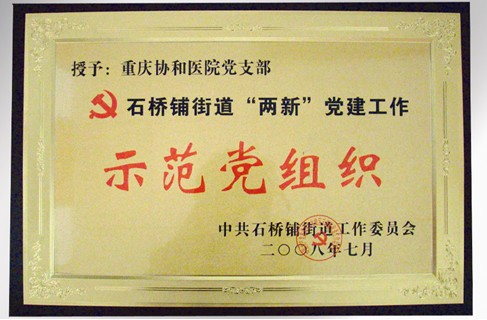 中共石桥铺街道工作委员会示范党组织